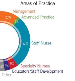 Areas of Practice